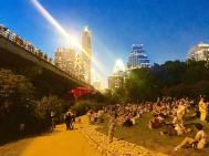 Watching the largest urban colony of bats take flight